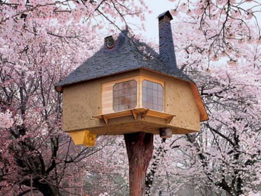 Taking Tea up in the Cherry Blossoms (treehouse)
