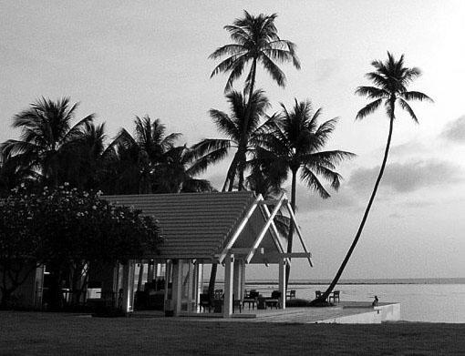 YL-Residence-Thailand-BW