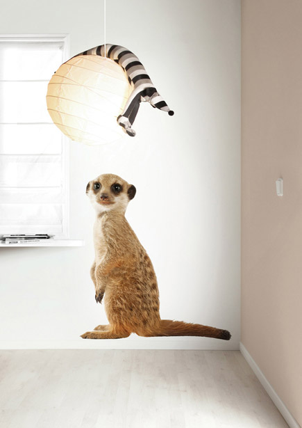 safari_friends_meerkat_XL_435x615px_RGB